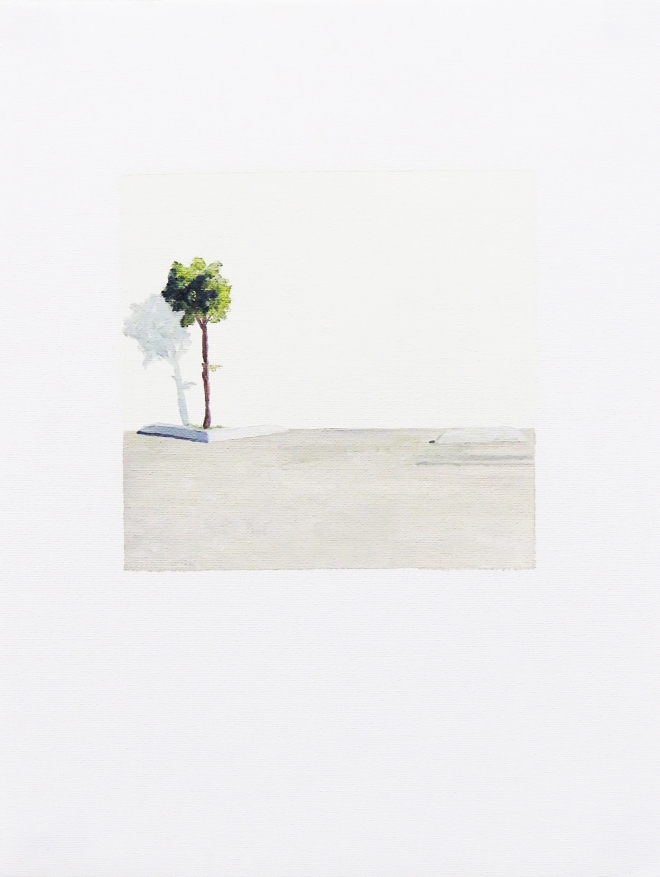Oil painting, little tree on parking lot in front of a white background with a cast shadow of the little tree.